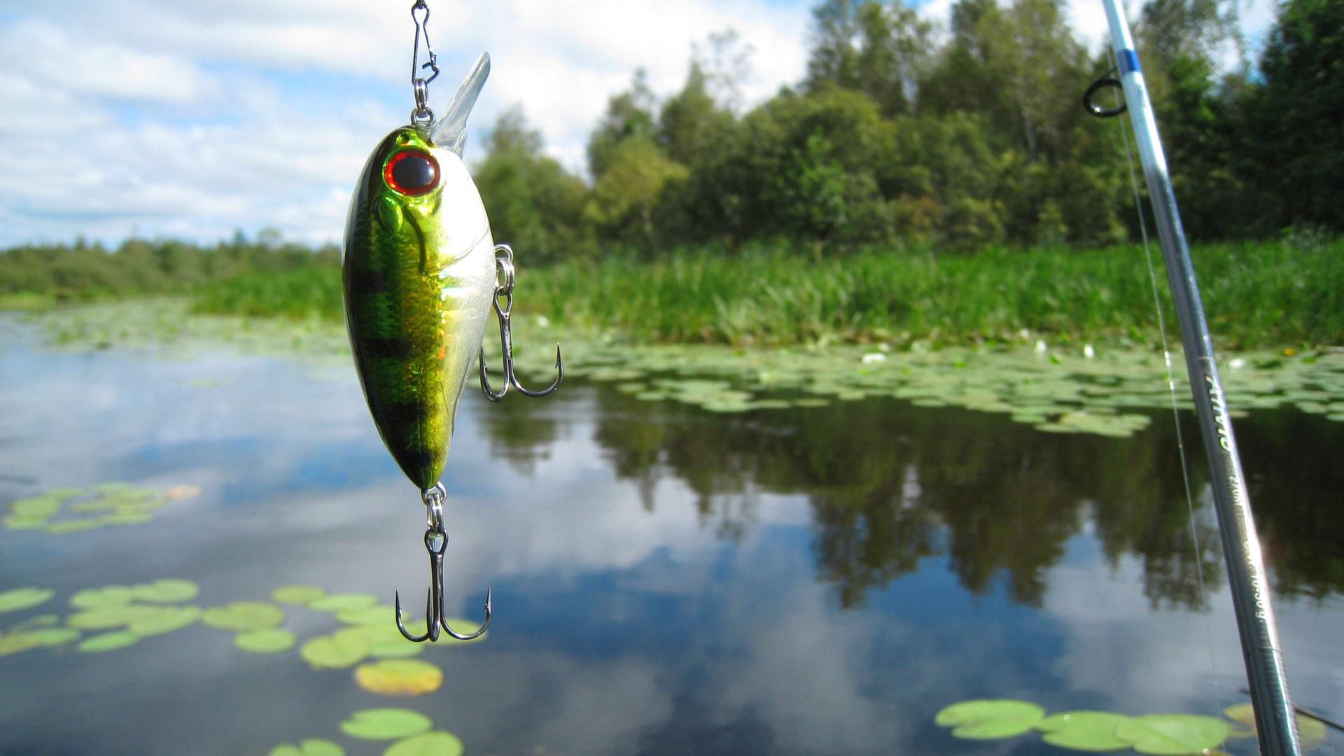 Que es Spinning Pesca